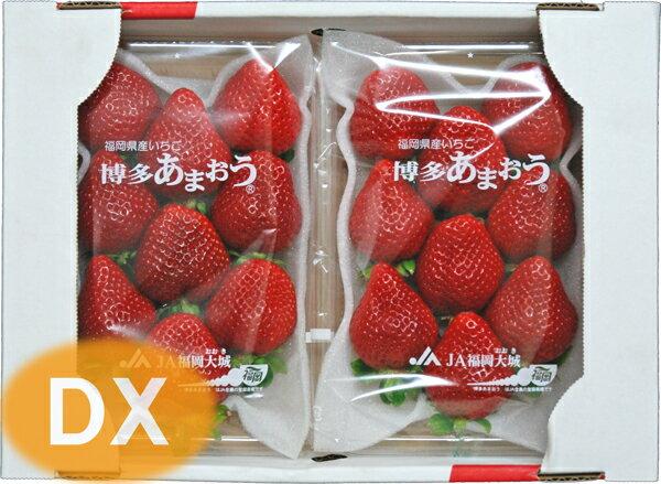 【初もの予約販売】 【いちご】 博多あまおう DX 1箱(2パック入り) 福岡産 【12月上旬~発送】