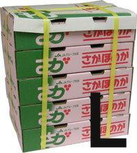 【箱売り】いちごLサイズ約20粒×20パック(さがほのか、さちのか、とよのか、あまおう、紅ほっ...