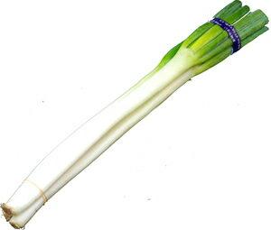 緑の部分はかためですが、みじん切りにして薬味や玉子焼きの彩にしたり、うすく斜め切りし汁物...