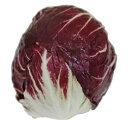 キャベツに似ていますが、イタリヤやフランスで料理に使われています、ワインレッド色の葉に白...
