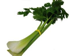 独特の香りとシャキシャキした歯ごたえが魅力的な野菜。葉の部分にも栄養があるので捨てずに食...