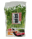 残った根と豆を育てて再収穫!シャキシャキした食感と豆の豊かな香りを活かす生食か・サッと熱...