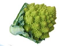 カリフラワーとブロッコリーの掛け合わせ♪ 緑黄色のゴツゴツとした見た目が特徴!九州の野菜...