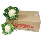 【箱売り】 カリフラワー 1箱(5玉〜8玉入り) 国産 【業務用・大量販売】【RCP】