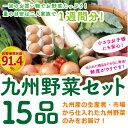 【あす楽】【セット】 おまかせ 九州野菜セット 15品 旬の野菜詰め合せ・おまかせ……