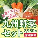 なかみが分かる 九州野菜セット《...