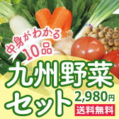 なかみが分かる 九州野菜セット《きゃべつ・ピーマン・なす・エリンギ・小松菜・きゅうり・とまと・さつま芋・しめじ・水菜》 九州産の旬の野菜セットますます便利に! お客様に支持され人気No、1