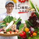 【あす楽】【セット】 おまかせ 九州野菜セット 15品 旬の野菜詰め合せ・おまかせ詰め合わせセット! 人気のセット! 西日本 【送料無料】