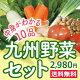 なかみが分かる 九州野菜セット《きゃべつ・ピーマン・なす・エリンギ・小松菜・きゅうり・とま…