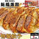 京都・たかばし 新福菜館 餃子セット (特性餃子 12個入×