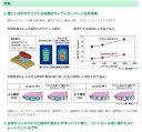 【送料無料】 Systema SP-T 歯ブラシ システマ 1本(お色お選びできません) (3) 2