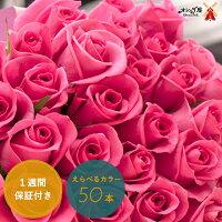 ◆バラ50本の花束