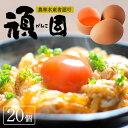 【送料無料】 生卵 卵かけご飯 お歳暮 たまご 卵 赤玉 お