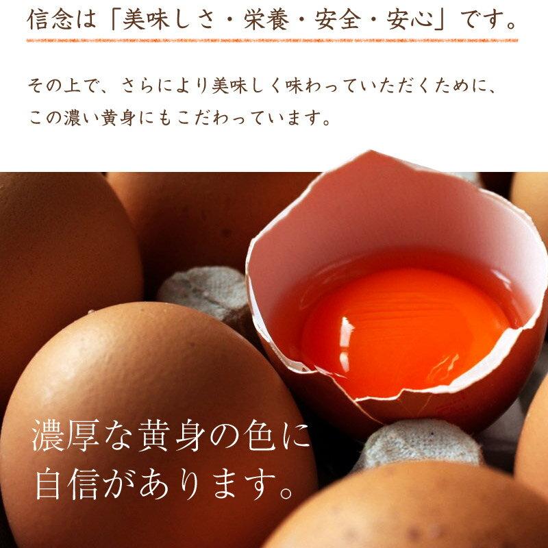 たまご 卵 赤玉 お試し 高級  高級卵 濃厚 鶏卵 生卵 栄養 新鮮 ギフト プレゼント 歳暮 お歳暮 ビタミン 保証 卵かけ ご飯 パック 包装  玉子 アレルギー 生