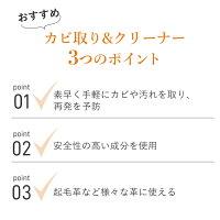 【シューケア】カビ取り&クリーナー70ml【あす楽対応】(カビ専用クリーナー)