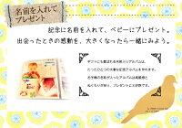 出産祝い・誕生記念・ベビー名前入り記念アルバム