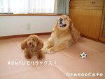 高反発衝撃吸収マット☆MUNYU(むにゅ)