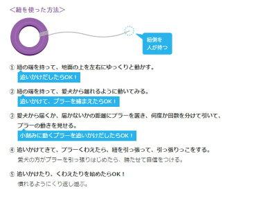 使い方(2)