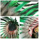 ウォーボンネット 羽根かんむり wn-12  グリーン ネイティブ インディアン 帽子・コスプレ 羽根飾り パーティー ハロウィン 3