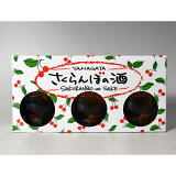 【朝日川酒造】さくらんぼの酒 さくらんぼの実入り 3本セット(170ml×3本) 消費税10%
