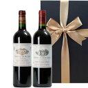 ワインギフト ボルドー赤ワイン 2本セット ヴィンテージ飲み比べ 2008年 2009年 750ml サン・テミリヨン ピュイスガン ラランド・ド・ポムロール