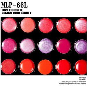リップパレット、グロス,メイクアップパレット66色MLP-66L