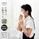 (送料無料)白手ぬぐい 5枚セット 日本製 | マスク 布マ...