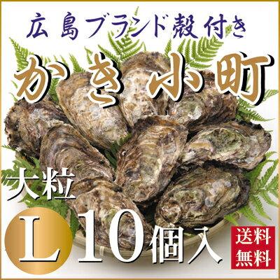 広島かき小町殻付き牡蠣(かき)L10個