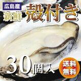 広島産 殻付き牡蠣(かき)30個入り【送料無料】加熱用
