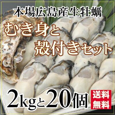 生かき・殻付かきセット-01