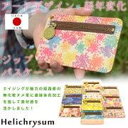 Helichrysum ヘリクリサム
