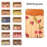 パスケース ヌメ革 花柄 総柄 オールレザー フルレザー Helichrysum ヘリクリサム