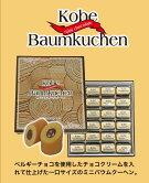 神戸ミニチョコバウムクーヘン24個入り