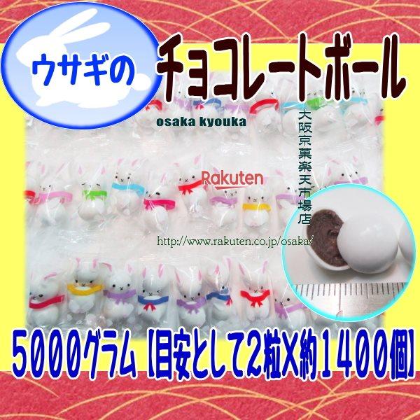 駄菓子, その他 ZR OE 500021400 1 fu