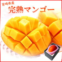 太陽のタマゴ完熟マンゴー宮崎県産青秀450g以上3L1玉父の日ギフト送料無料