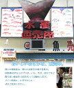 寿司職人 イカ 2枚セット 皮むき 刺身用 冷凍 250g 2