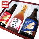 名入れ酒 名入れプレゼント 送料無料 DHCビール2本と、名入れ梅酒のセット ギフトカートン入り 名入れ ...