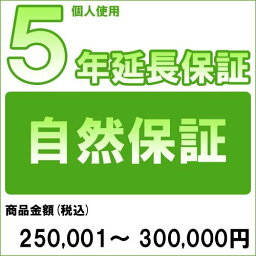 【対象商品のみ】個人5年延長保証(自然故障)商品金額 税込250,001円〜300,000円用(99990003-30)