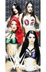WWEはWorld Wrestling Entertainment/WWEディーバ王座はWWE女子レスラー スーパースター/勝運ビーチ タオル/ベラ ツインズ/エヴァ マリー/ペイジが主役/こんなタオル欲しかった/【発送は宅急便コンパクト】