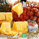 パイナップル 沖縄 1.8kg 【初回限定】 石垣 西表 国