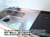 送料無料シンクコーティング剤ステンレスシンクコーティング剤お風呂洗面キッチン流し台金属蛇口汚れ防止艶出し撥水コーティング防錆スプレーつや出しクリーナー