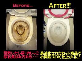 【お掃除プロの黄ばみ落とし・尿石除去剤】業務用トイレ掃除洗剤5点セット【酸性&中性トイレ洗浄剤】
