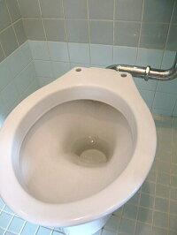 トイレ用洗剤,人気ランキング,超強力トイレクリーナー,酸性トイレ洗剤,トイレ掃除洗剤,業務用トイレクリーナー,プロおすすめのトイレ用洗剤,トイレ黄ばみ黒ずみをすっきり&簡単に落とす方法