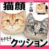 猫顔クッションデジタルCATクッションネコ顔ネコフェイスクッションリアル猫ぬいぐるみインテリアネコグッズ猫雑貨ねこニャンコ薔薇雑貨のおしゃれ姫