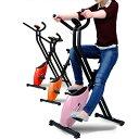 フィットネスバイク アルインコ直営店 ALINCO基本送料無料DSY6219 エアロマグネティックバイク 6219[MC/ME]ミッキー ミニー スピンバイク ダイエット/健康 bike ダイエット マグネットバイク