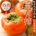 【農家より直送!】奈良西吉野産採りたて直送富有柿(12個入り・約3.3kg)【 特秀品 2L 】