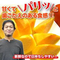 【農家より直送!】奈良西吉野産採りたて直送富有柿(7.5kg)【特秀品2L】