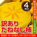 【送料無料】【農家より直送!】奈良西吉野産わけありたねなし柿(15〜20個入り・約4kg)【サイズM〜2L】