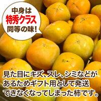 【農家より直送!】奈良西吉野産わけありたねなし柿(15〜20個入り)【サイズM〜2L】