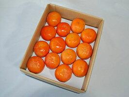 【農家より直送!】奈良西吉野産L玉富有柿7.5kg箱(28個入り)